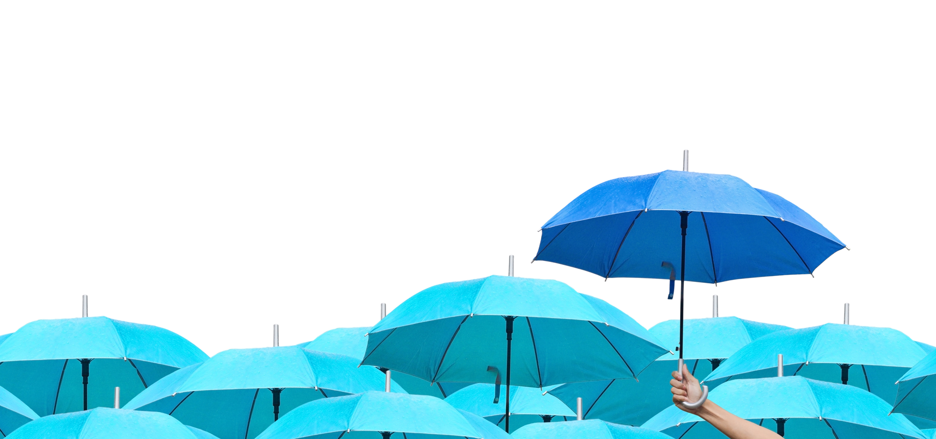 compare umbrella companies